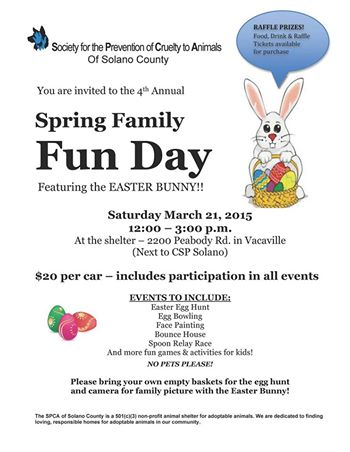 Spring family fun day 2015